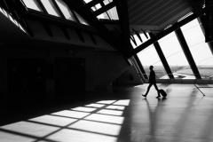 201410_silhouette_01_rd
