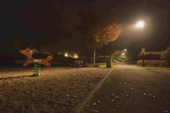 201811_nuit_et_brouillard_rd_03
