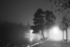 201811_nuit_et_brouillard_rd_10