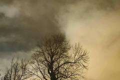 201811_nuit_et_brouillard_rd_13